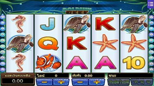 สัญลักษณ์ต่างๆในเกม Dolphin Reef