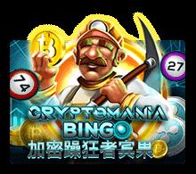 ทดลองเล่น Crypto mania Bingo