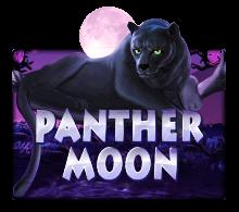 รีวิวเกม PANTHER MOON