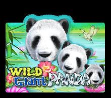 Wild giant panda รีวิวเกม https://joker123tm.com/