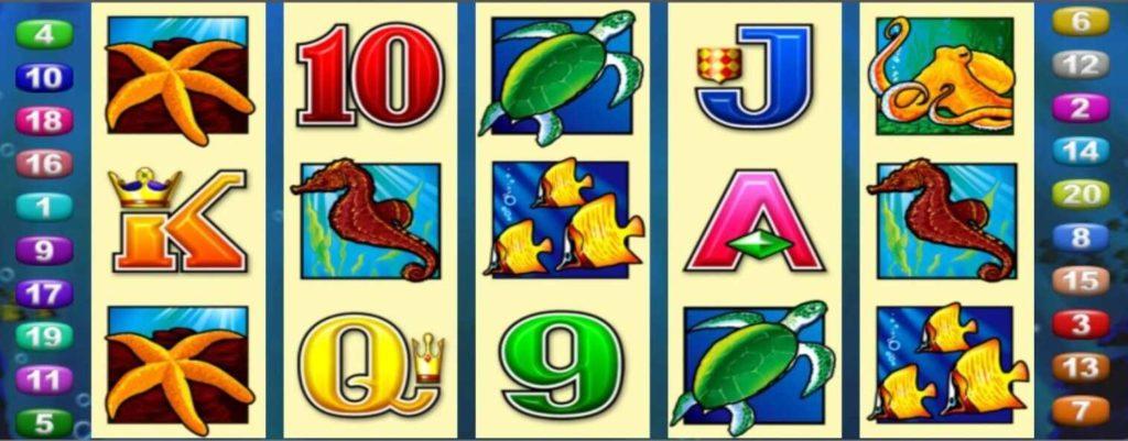Dolphin Treasure joker123tm